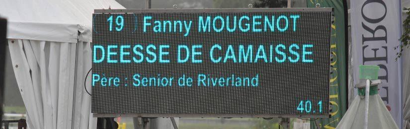Fanny se lance dans la finale des jeunes chevaux à Fontainebleau !