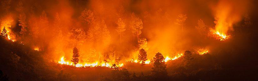 Incendie sur Eguilles : plus de 80 hectares partis en fumée, 6 abris brulés aux écuries.